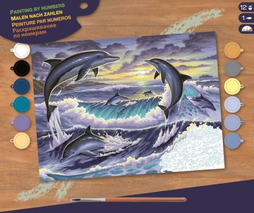 Picture of Paint By Numbers - Dolphin Sunrise