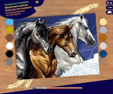 Picture of Paint By Numbers - Wild Horses