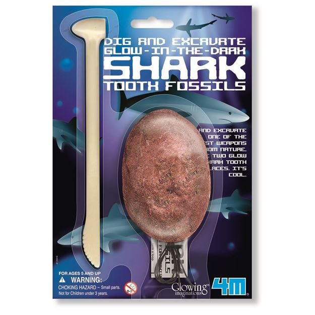 Picture of 4M Science - Dig a Glow Shark Tooth