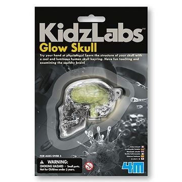 Picture of 4M Science - Glow Skull