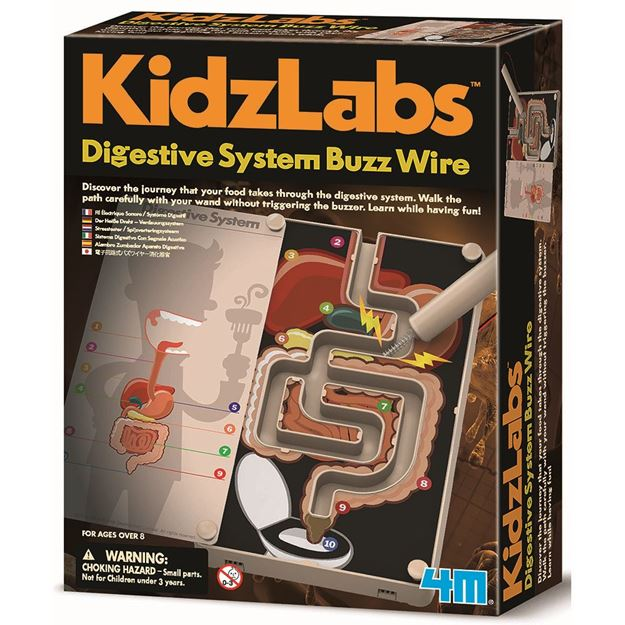 Picture of 4M Science - Digestive System Buzz Wire