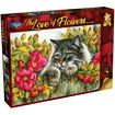 Picture of Holdson Bargain Puzzle - The Love of Flowers, 1000pc (Rose Hedge)